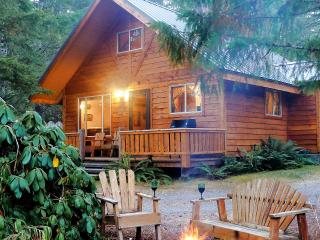 Tahoma Vista Chalet-luxury w/hot tub, wifi, BBQ, Ashford