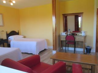 Kilbree House Double/Twin Room, Galway