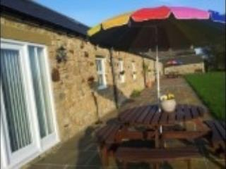 Hamsteels Hall Holiday Cottages - Dairy Cottage, holiday rental in Shotley Bridge