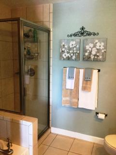 Master Bath walk in shower.