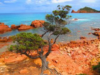 Vacanze Sardegna | TERRA | CaSarda_ch *., Capo Comino