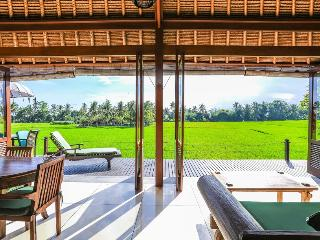 Million $ Ricefield Views 2BDR Villa Sungai in Ubud w Infinity Pool