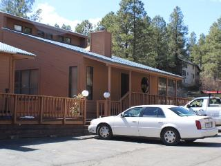 Timbers 3 is a cute and quiet vacation condo in Pagosa Springs.