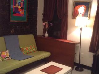 Cozy 2 bedroom apt near Times Square, New York City