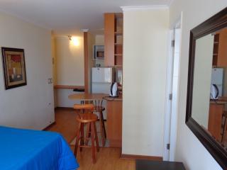 Apartamento 1 Dormitorio Vicuña Mackenna, Santiago