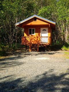 Coho Salmon Cabin is a smaller Camping cabin...you provide the linens.