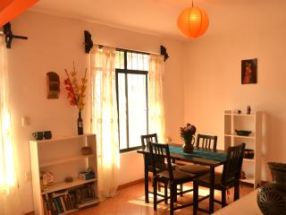 Nice, Cheap and Well Located Apt in Oaxaca!