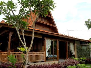 New Villa Jarwan with Lap Pool
