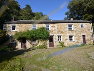 41023 Cottage in Falmouth, Penryn