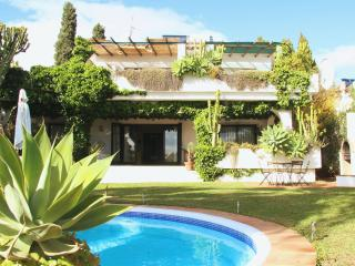 The Turtle Villa in Marbella with privat pool