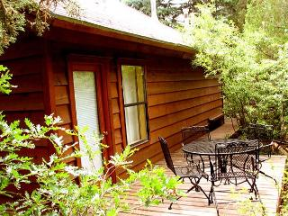 El Salto Guest Cabin private secluded wi-fi dsl hot tub deck loft, Arroyo Seco
