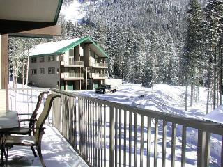 Wheeler Peak 106 -Upscale  condo. Light and bright, 2/10 of a mile to lift, Taos Ski Valley