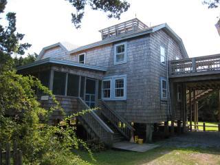 Purple Martin, Ocracoke