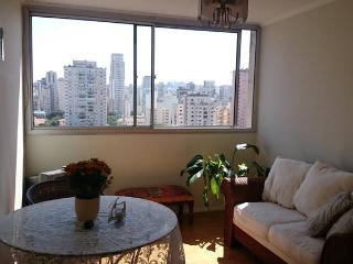 Ótima Localização em Pinheiros!!! 47 m² Mobiliado, Sao Paulo