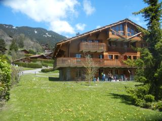 Beautiful mountain chalet apartment, Chesieres