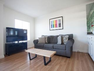 Spacious and Modern Unit steps to Venice Beach Pier, Marina del Rey