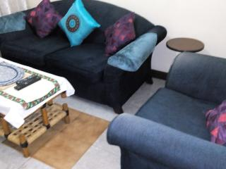 1 BEDROOM FLAT- FURNISHED IN  WESTLANDS, Nairobi