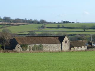View of barns from nearby field