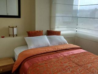 Beautiful and comfortable apartment in Quito Ecuad