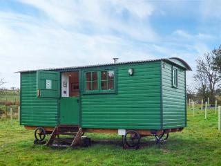 PEAT GATE SHEPHERD'S HUT, quirky holiday base with woodburner, WiFi, king-size bed, back to nature near Haltwhistle Ref 936738
