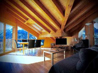 Apartment C  Living Area featuring beautifully hand crafted Timbered Roof