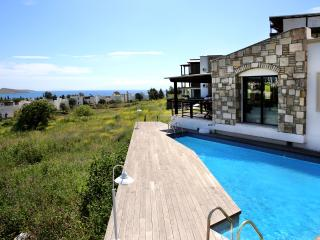 Important Group | BD422 5 Bedroom Pool Villa in Ortakent