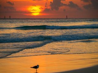Island Retreat in Palm Beach Shores