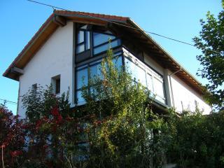 Casa de diseño con jardín, Rada