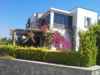 Turgurteis Holiday Villa BL***********, Akyarlar