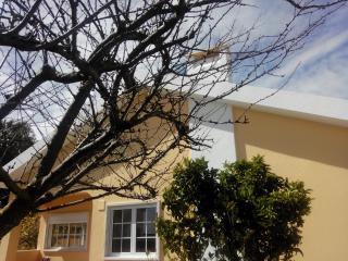 A Casa da Avozinha (The Granny's House)