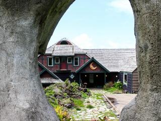 Dog-friendly, oceanfront storybook home - a must-see!, Yachats