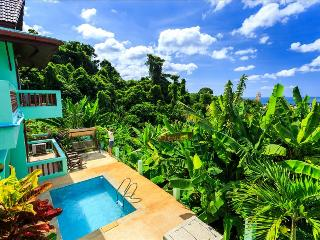 Seaview private pool villa in Patong for 9 people! Vista1