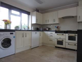 well equipped kitchen with washing machine, dishwasher and oven range