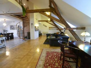 Attic Hastalska - Grand Luxury Apartments
