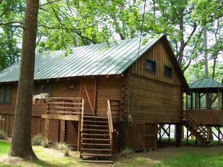 Shenandoah Shores Riverfront Log Cabin, Luray