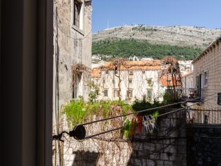 Historic Downtown Apartments - Double Room with Shared Terrace