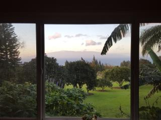 Aloha Cottage With A View