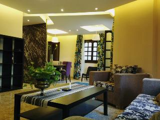 Luxury apartment for rent in Cairo maadi