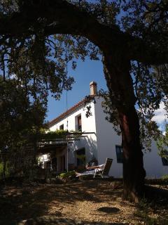 Finca 'La Tejonera' en Sierra de Aracena
