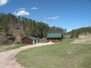 Newton Creek Cabin, Hill City