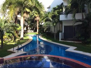 Beautiful Shared Penthouse in Playacar