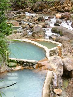 Hot Springs Spa - Dominica