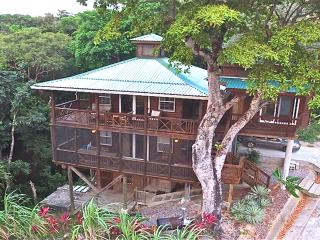 Treehouse - Roatan, Honduras. Spectacular Views!, West Bay