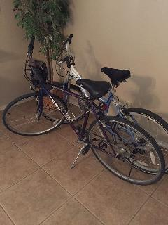 2 bikes for your use on the wonderful trails