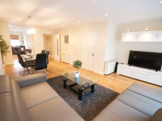 Sleeps 10 - 3 Bed / 3 Bath Luxury Duplex, Dublin