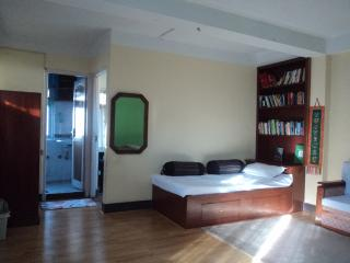 small, cozy apartment near Thamel, Kathmandu
