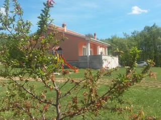 Villa Tana, Tinjan