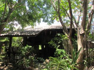 guest house in the trees