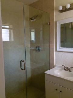 Master ensuite with walk-in shower.