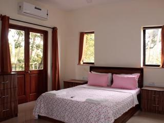 Cozy 1 bedroom in Arpora